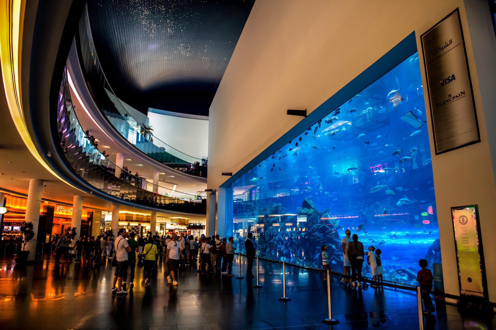 dubai aquarium - إكواريوم دبي (4)
