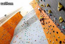 صورة تسلق الجدار الصخري دبي