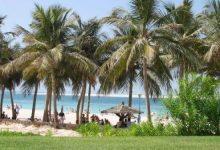 صورة حديقة شاطئ الجميرا