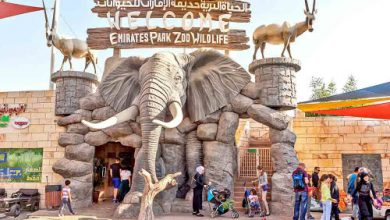 Photo of Emirates Park Zoo Tickets, Timings, Activities and more